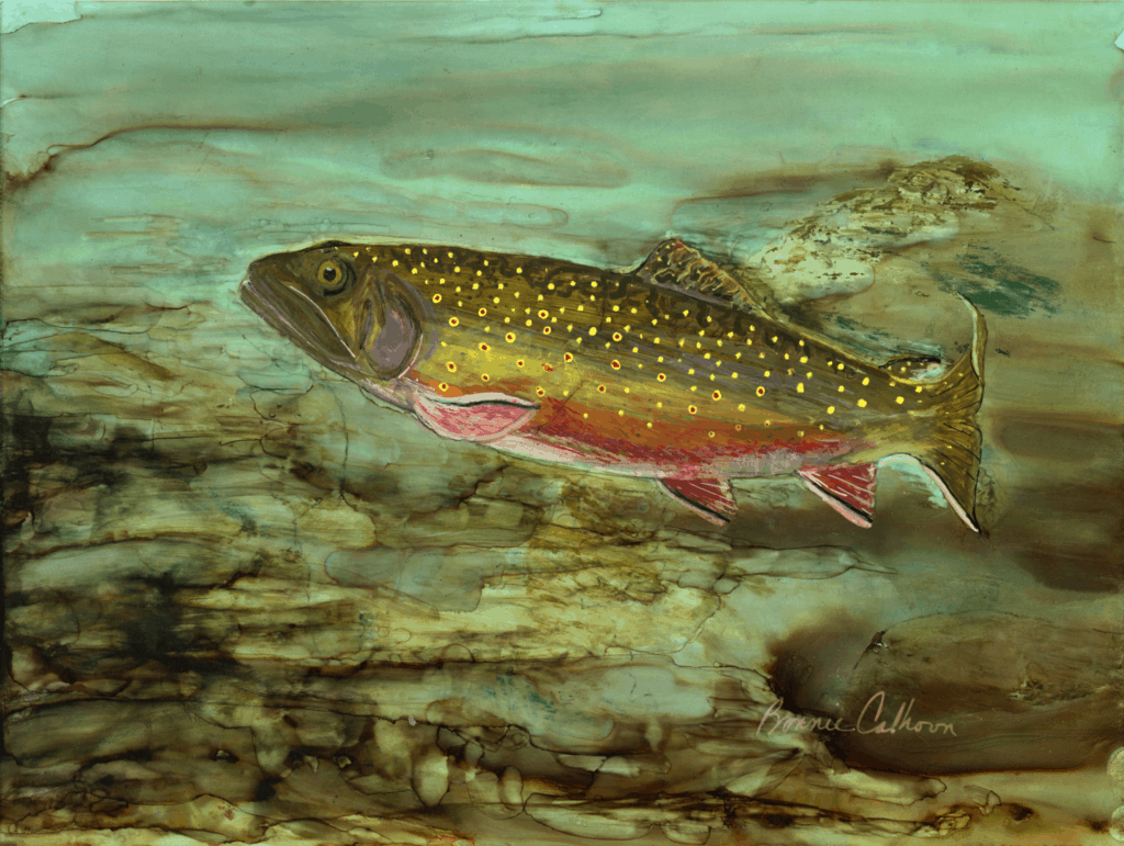 Haywood Arts Council - Brook Trout